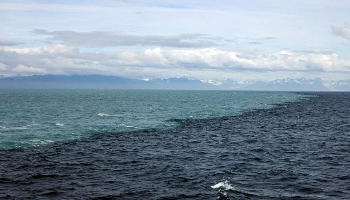 oceans-Netmarkers