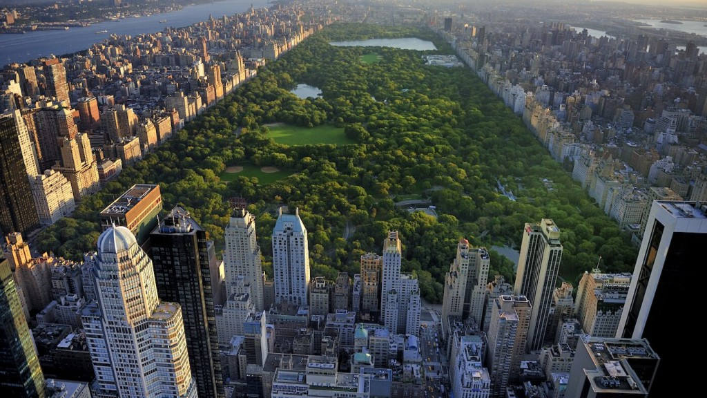 10 amazing facts about New York- Netmarkers