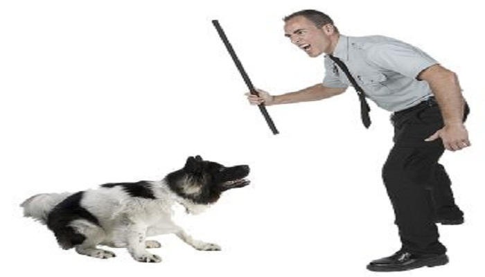 beating a dog-Netmarkers