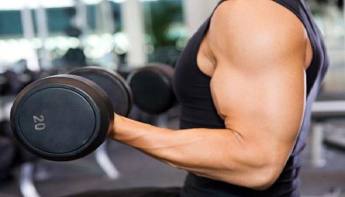 balanced workout-Netmarkers