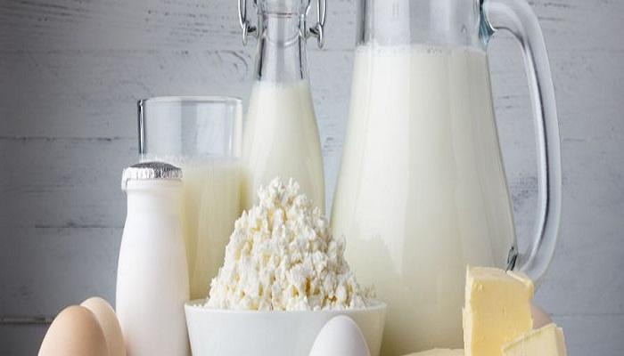 dairy foods-Netmarkers