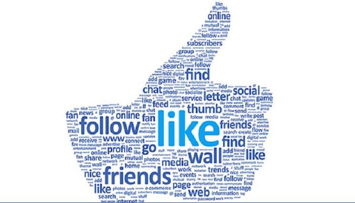 newlikes Facebook-Netmarkers