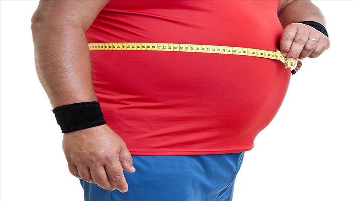 obesity-Netmarkers