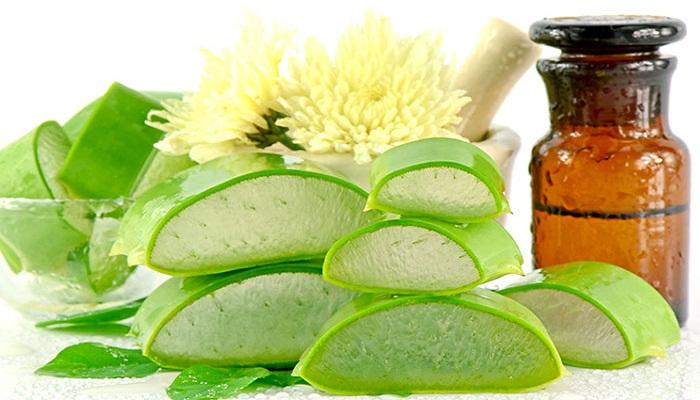 Aloe-Vera-Benefits-Netmarkers