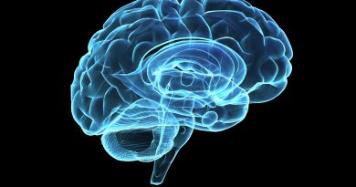OMG!These habits are damaging your brain.Stop them right away- Netmarkers
