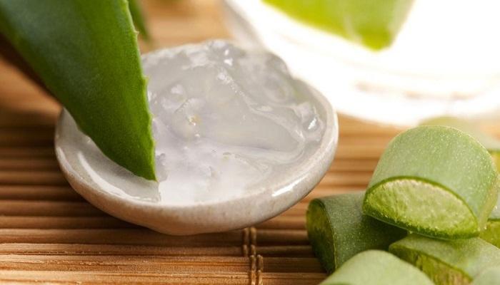 aloe-vera-for-acne-treatment-Netmarkers