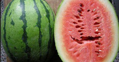 avoid such watermelon-Netmarkers