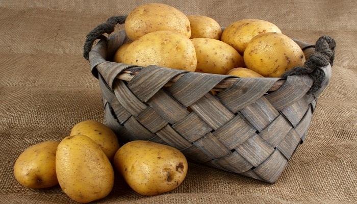 potato-Netmarkers