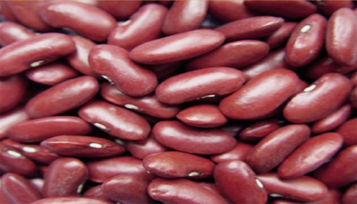 beans-reduce-belly-fat-netmarkers