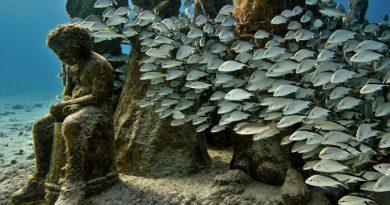 underwater-sculpture-park-grenada-netmarkers