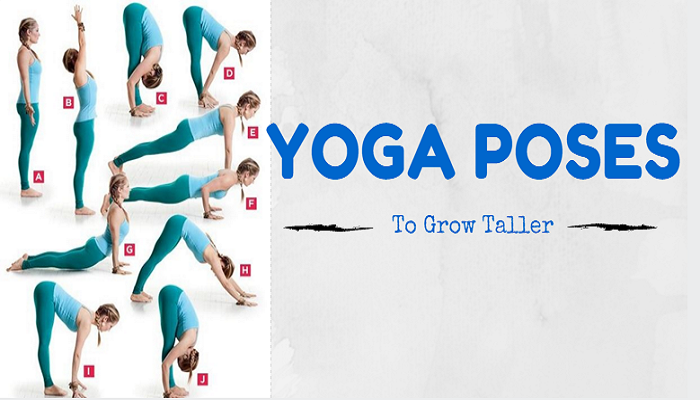 yoga-excercise-to-grow-taller-netmarkers