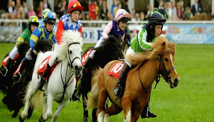 9-famous-and-stunning-race-horse-breeds-netmarkers