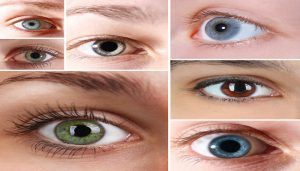 eye-color-netmarkers
