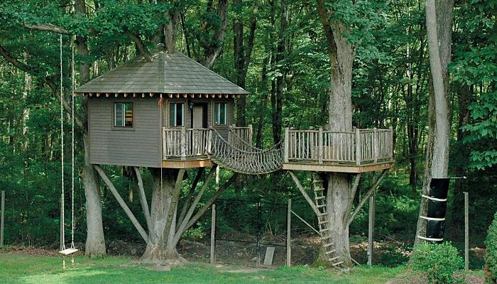 Build-a-tree-house-Netmarkers