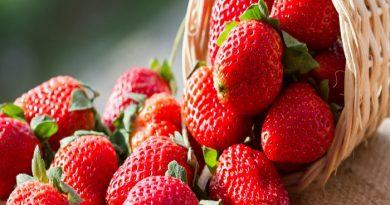 strawberry-netmarkers
