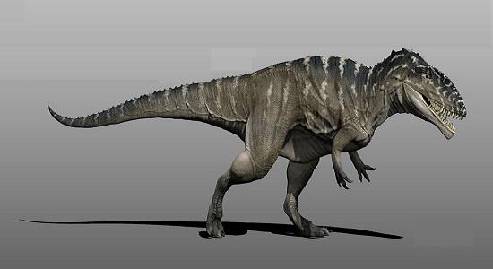 Carcharodontosaurus-netmarkers