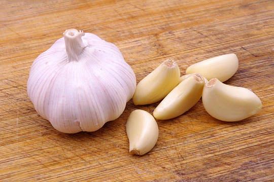 garlic-netmarkers