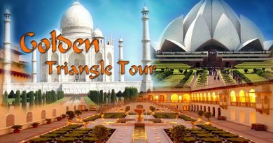 golden-triangle-tour-packages-netmarkers