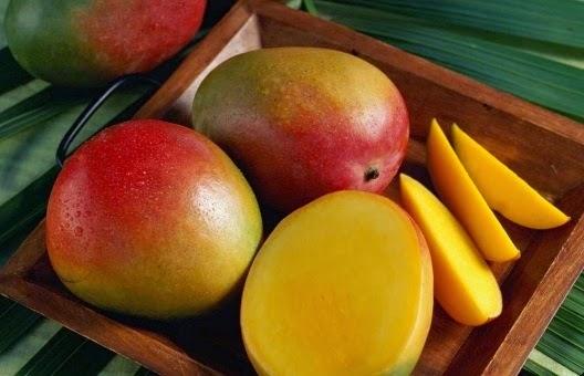 mango-netmarkers