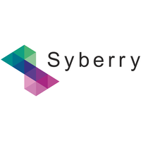 Top Ten Website Development Companies Of New York - Syberry Corporation - NetMarkers