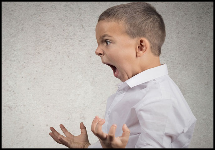 10-Common-Child-Behavioral-Problems-You-Should-Understand-Aggression-NetMarkers